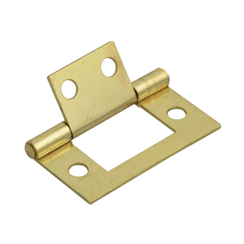 Flush Hinge Brass Finish