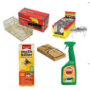 Plant Label Insect Traps (Pack 10)