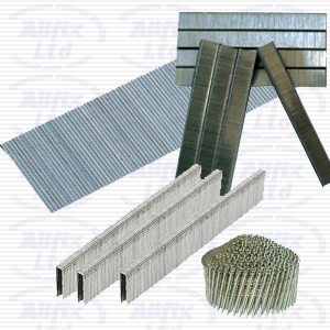 13/4 4mm Galvanised Staples Box 5000